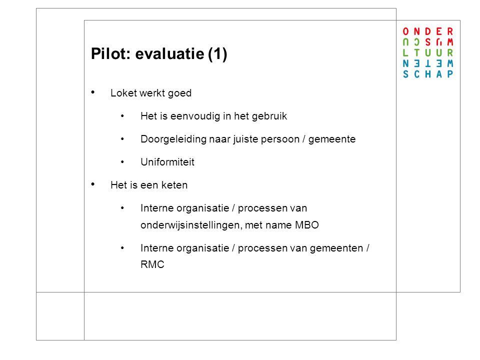 Pilot: evaluatie (2) Aanvullingen op loket: Gebruikersgemak