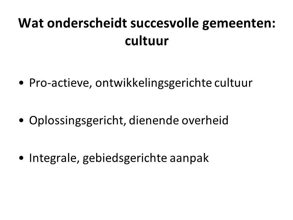 Wat onderscheidt succesvolle gemeenten: cultuur