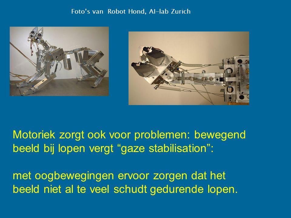 Foto's van Robot Hond, AI-lab Zurich