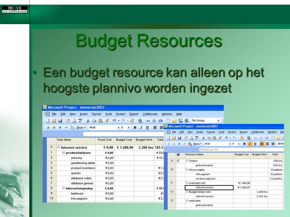 Budget Resources Een budget resource kan alleen op het hoogste plannivo worden ingezet