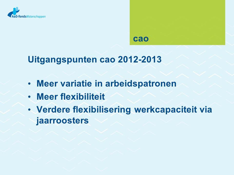 cao Uitgangspunten cao 2012-2013. Meer variatie in arbeidspatronen.