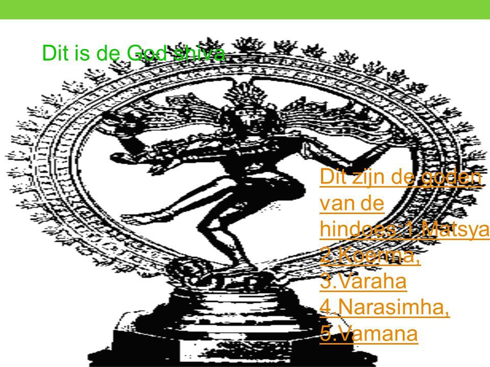 Dit is de God shiva Dit zijn de goden van de hindoes:1.Matsya.