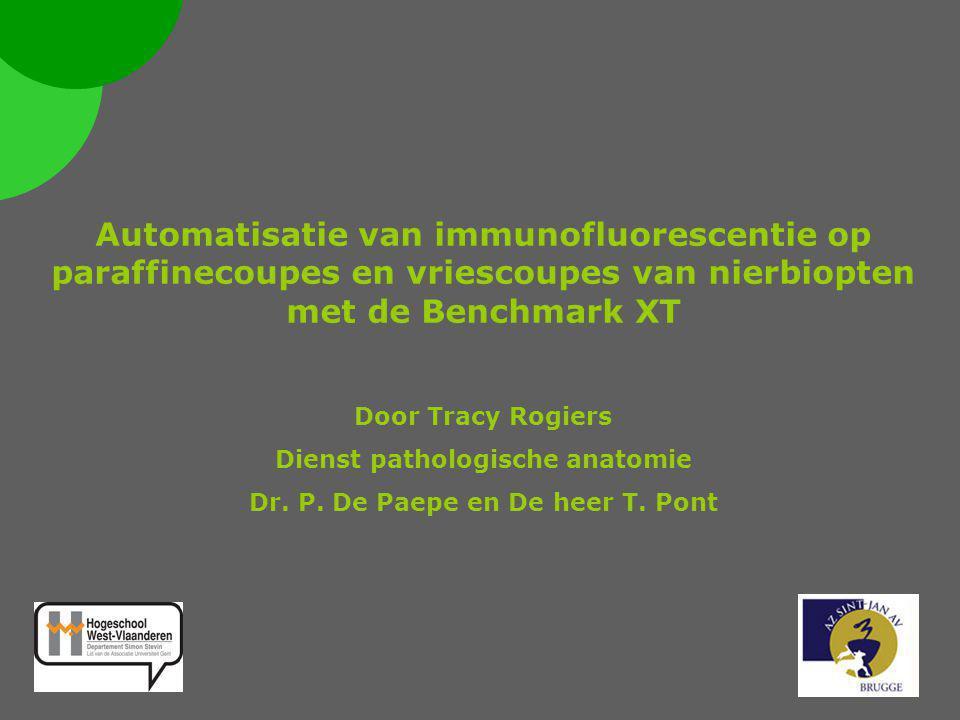 Automatisatie van immunofluorescentie op