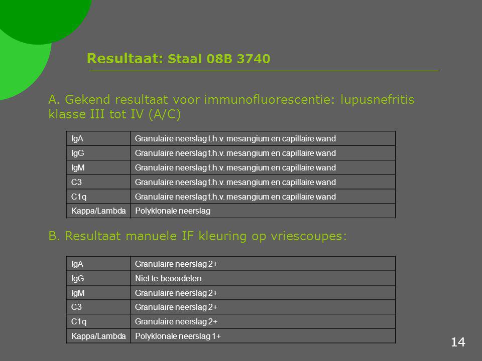 Resultaat: Staal 08B 3740 A. Gekend resultaat voor immunofluorescentie: lupusnefritis klasse III tot IV (A/C)
