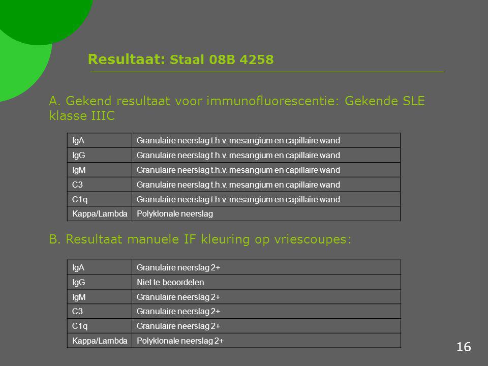 Resultaat: Staal 08B 4258 A. Gekend resultaat voor immunofluorescentie: Gekende SLE klasse IIIC. IgA.