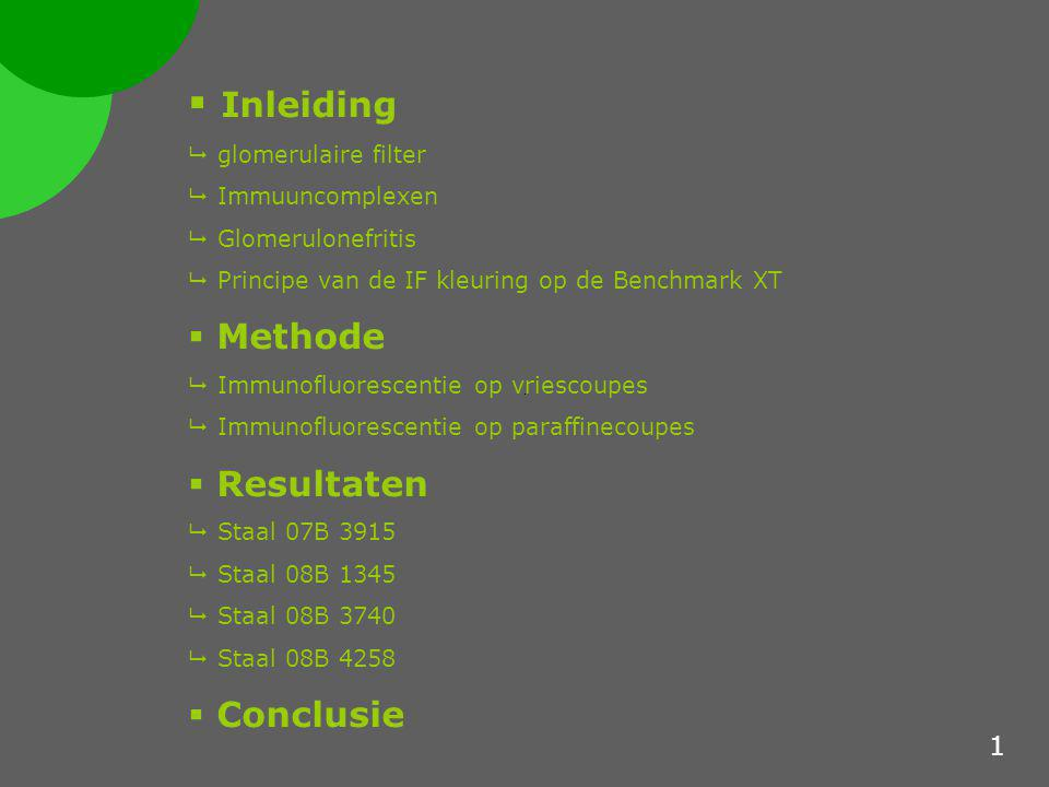 Inleiding Methode Resultaten Conclusie 1 glomerulaire filter