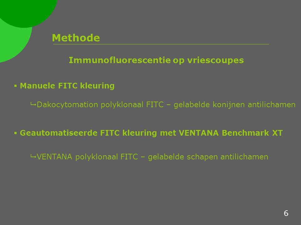 Immunofluorescentie op vriescoupes