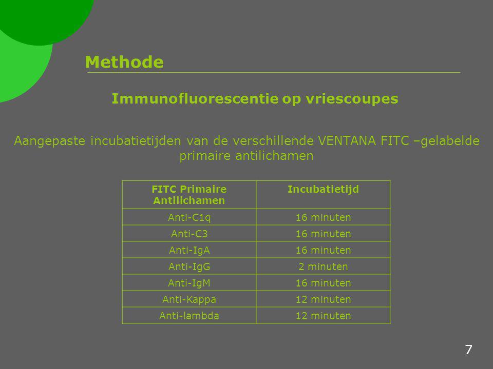 FITC Primaire Antilichamen