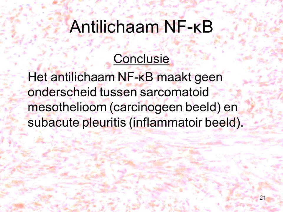 Antilichaam NF-κB Conclusie