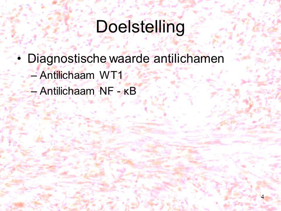 Doelstelling Diagnostische waarde antilichamen Antilichaam WT1