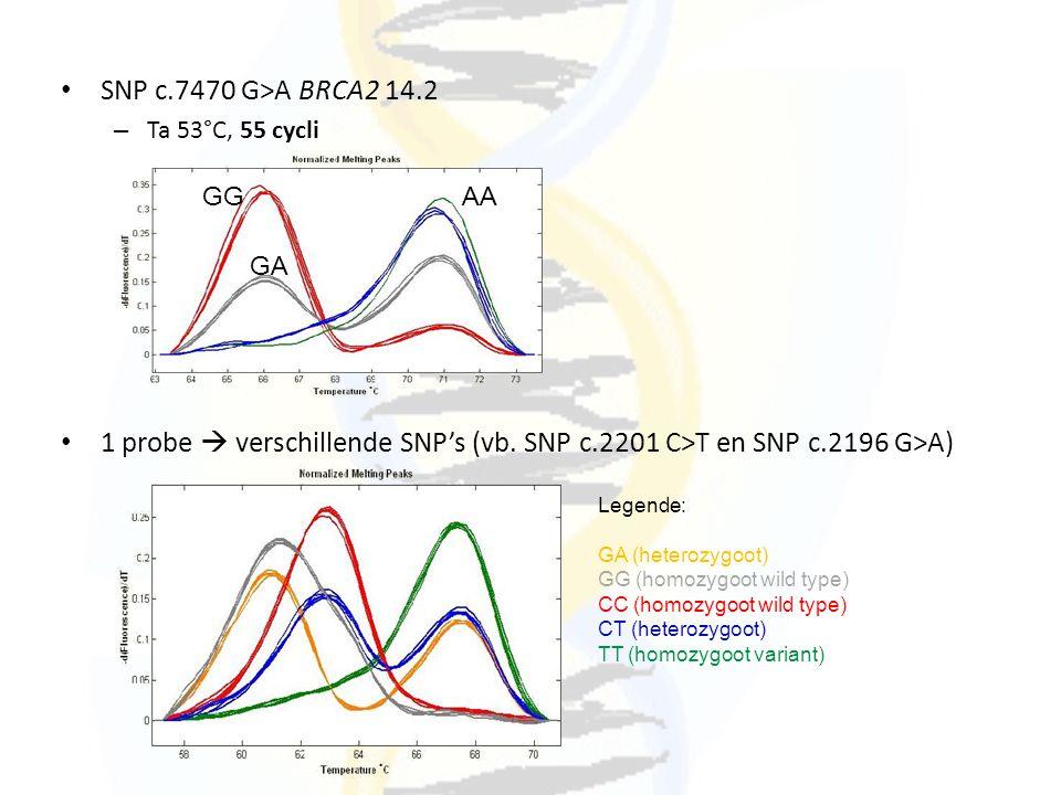 SNP c.7470 G>A BRCA2 14.2 Ta 53°C, 55 cycli. 1 probe  verschillende SNP's (vb. SNP c.2201 C>T en SNP c.2196 G>A)