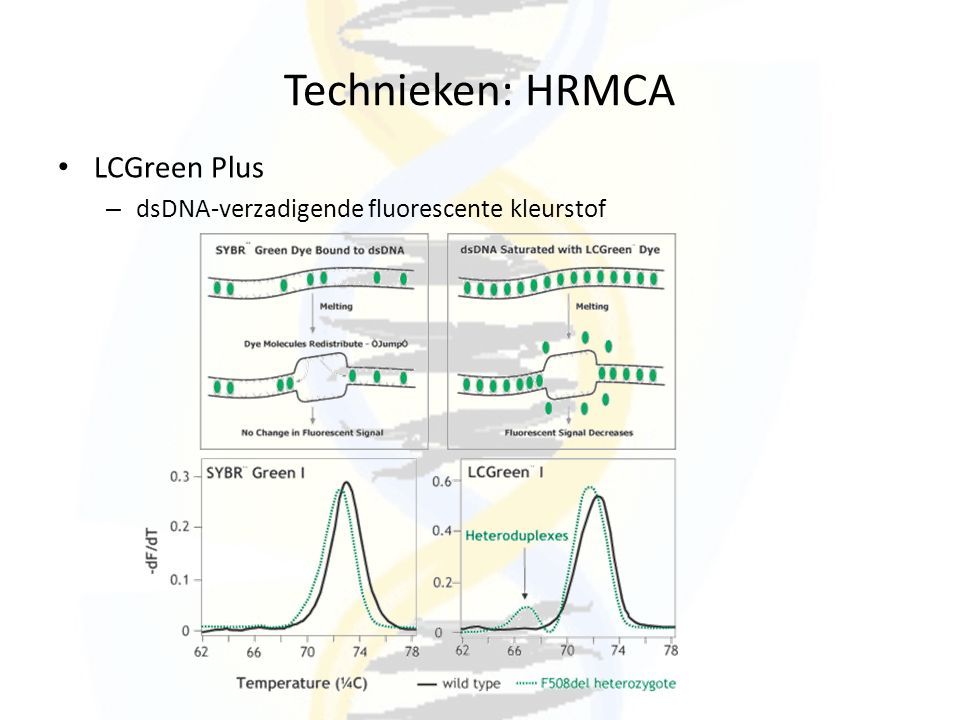 Technieken: HRMCA LCGreen Plus