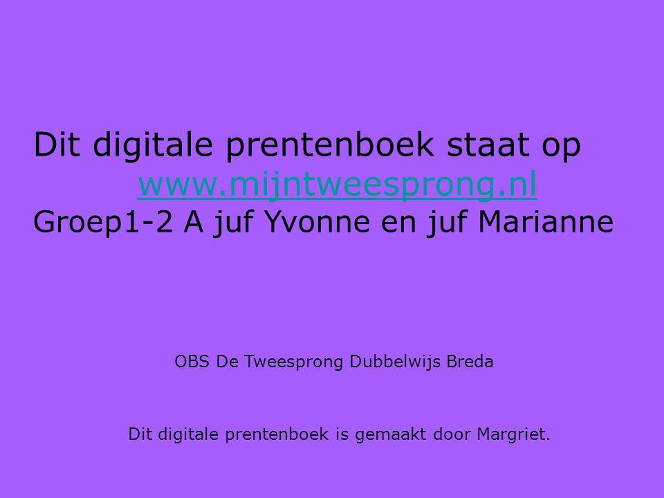Dit digitale prentenboek staat op www.mijntweesprong.nl