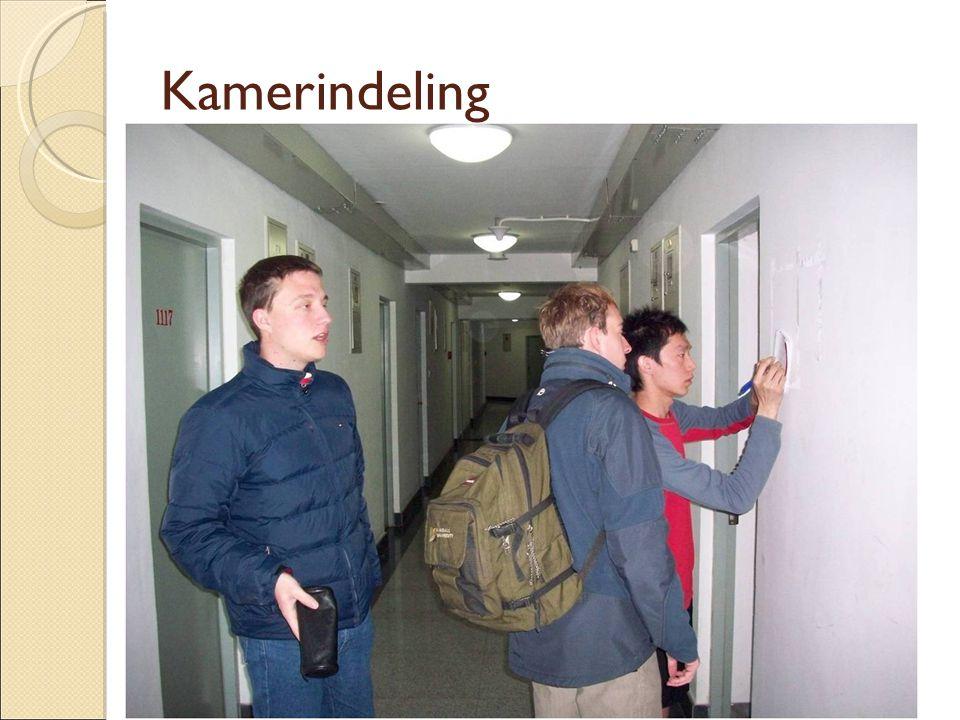 Kamerindeling