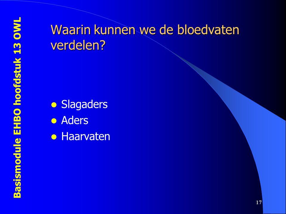 Waarin kunnen we de bloedvaten verdelen
