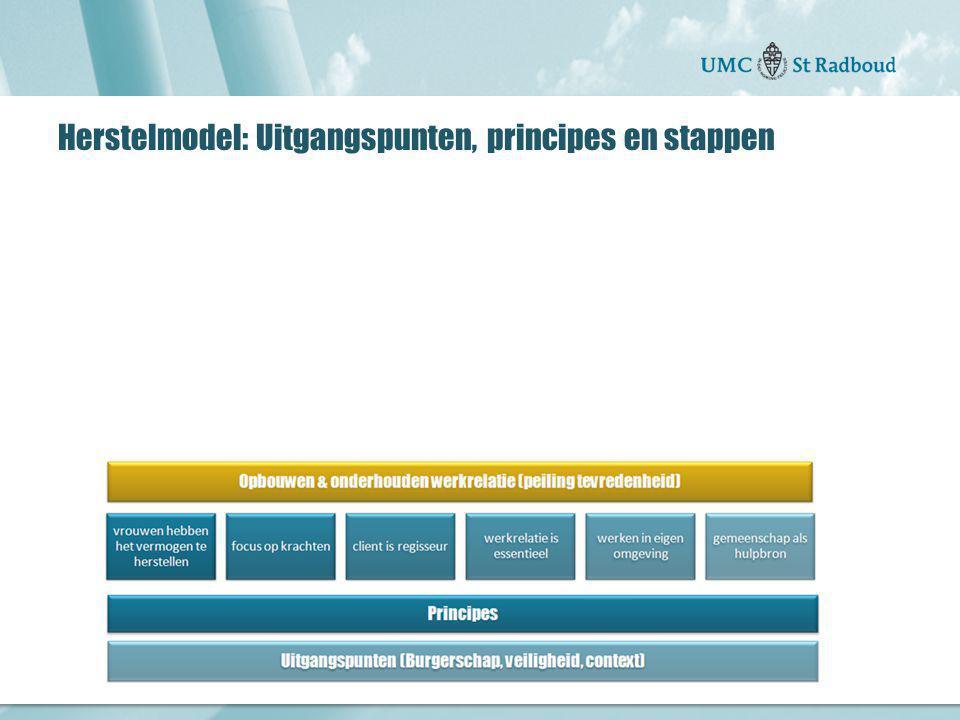 Herstelmodel: Uitgangspunten, principes en stappen