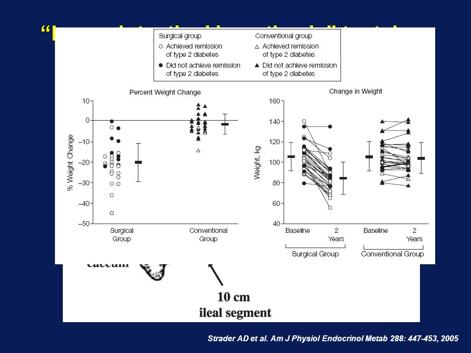 Lower intestinal hypothesis toetsing: Transpositie van ileum segment