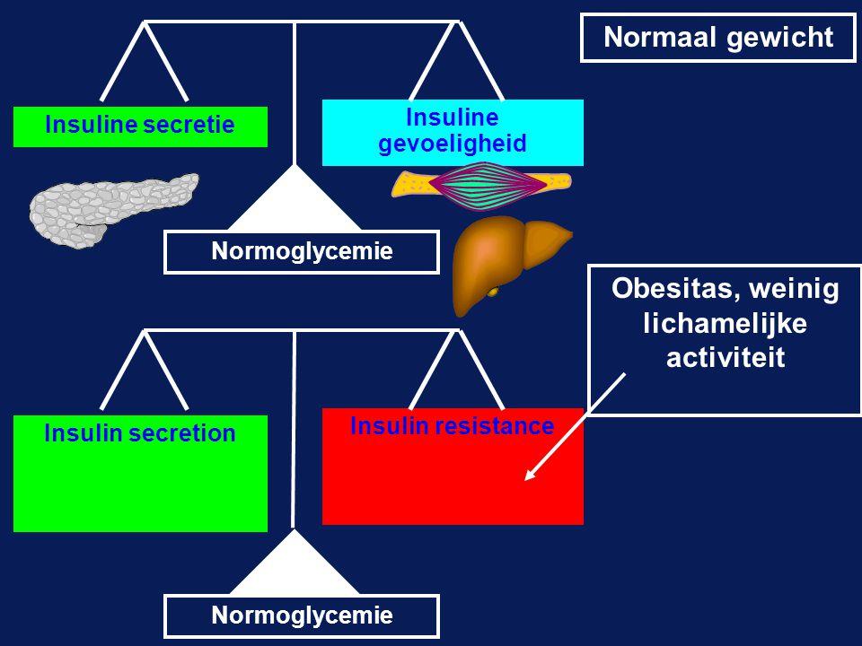 Insuline gevoeligheid Obesitas, weinig lichamelijke activiteit