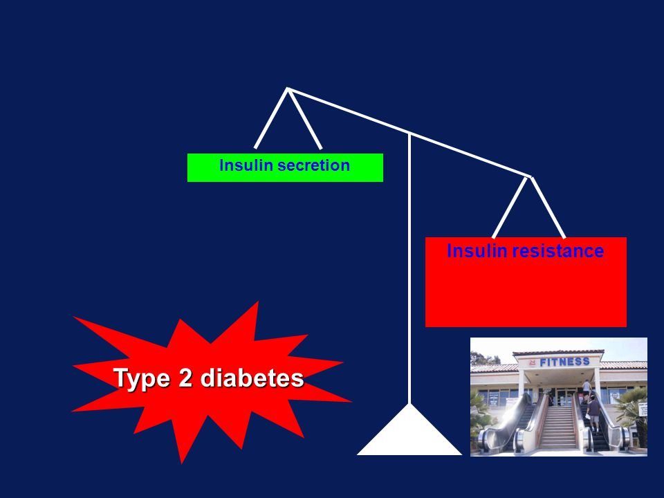 Insulin secretion Insulin resistance Type 2 diabetes
