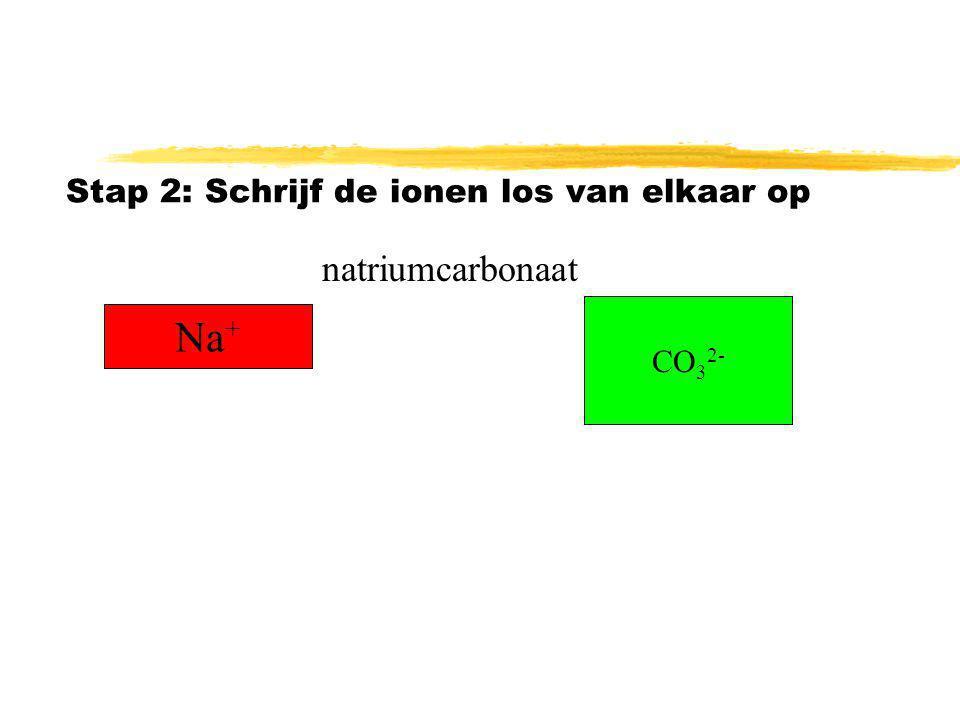 Stap 2: Schrijf de ionen los van elkaar op