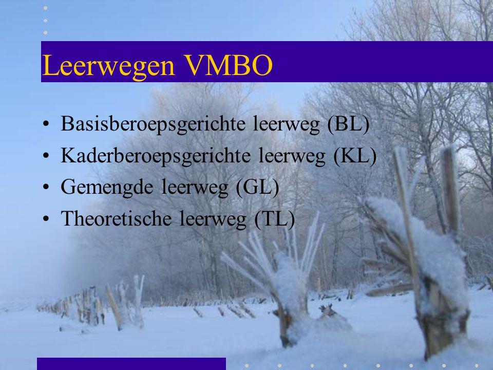 Leerwegen VMBO Basisberoepsgerichte leerweg (BL)