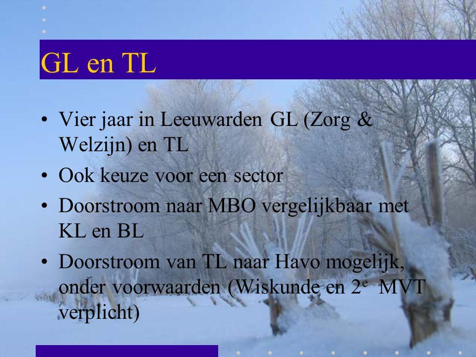 GL en TL Vier jaar in Leeuwarden GL (Zorg & Welzijn) en TL