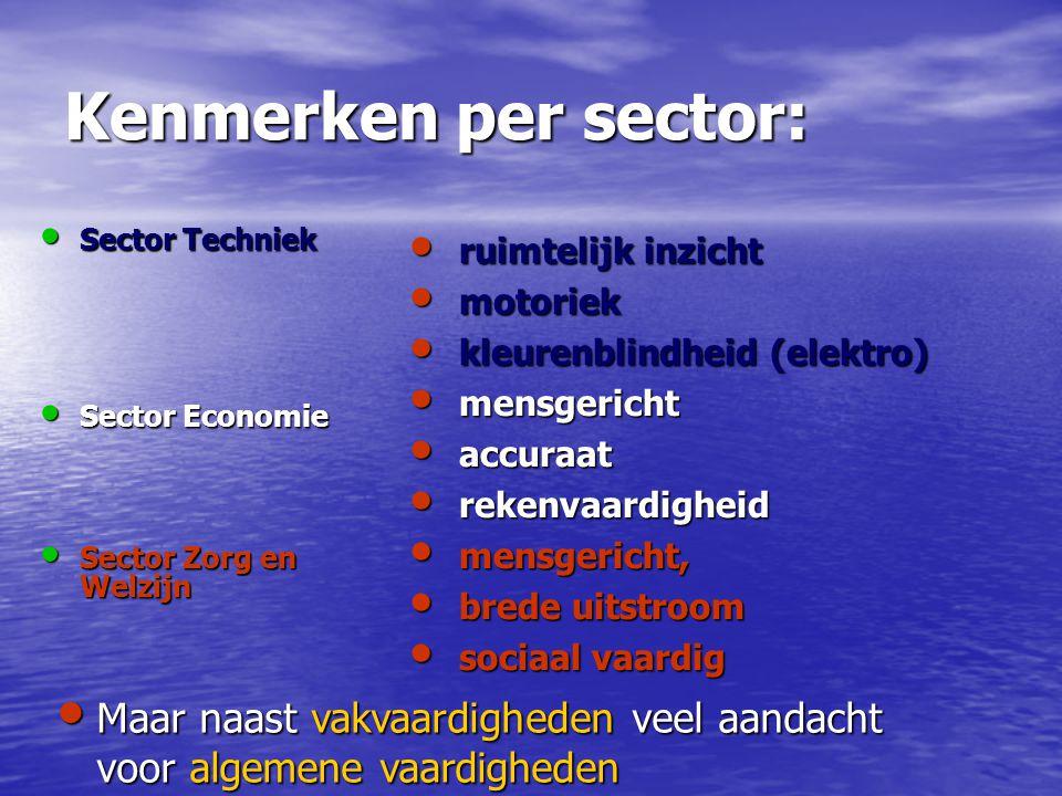 Kenmerken per sector: Sector Techniek. Sector Economie. Sector Zorg en Welzijn. ruimtelijk inzicht.