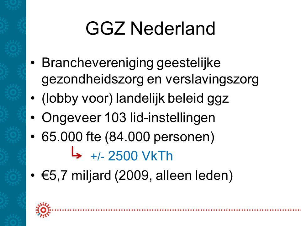 GGZ Nederland Branchevereniging geestelijke gezondheidszorg en verslavingszorg. (lobby voor) landelijk beleid ggz.