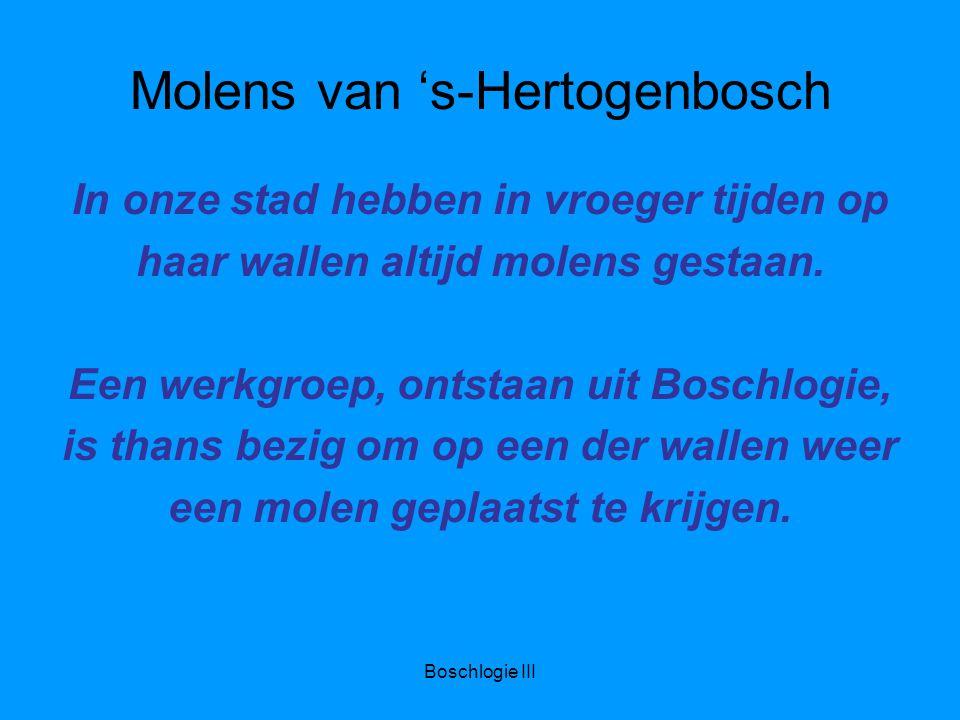 Molens van 's-Hertogenbosch