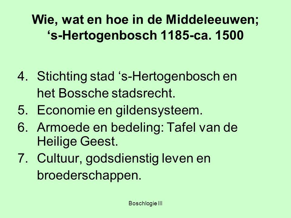 Wie, wat en hoe in de Middeleeuwen; 's-Hertogenbosch 1185-ca. 1500