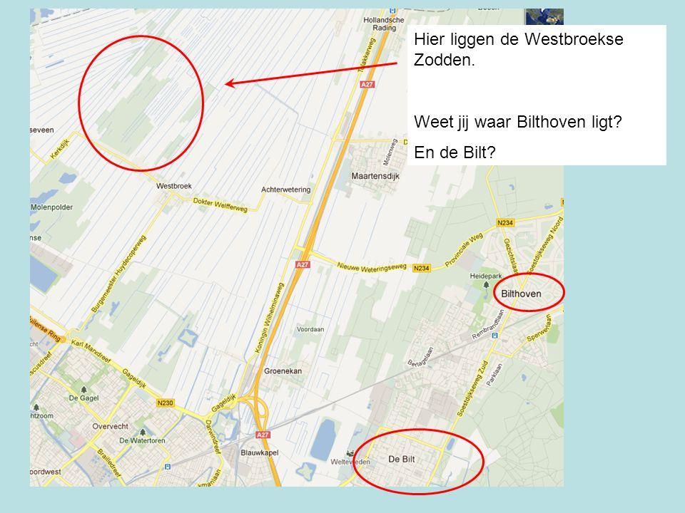 Hier liggen de Westbroekse Zodden.