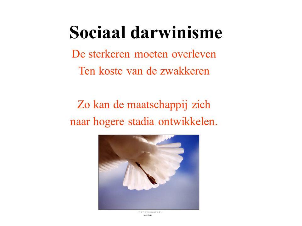 Sociaal darwinisme De sterkeren moeten overleven