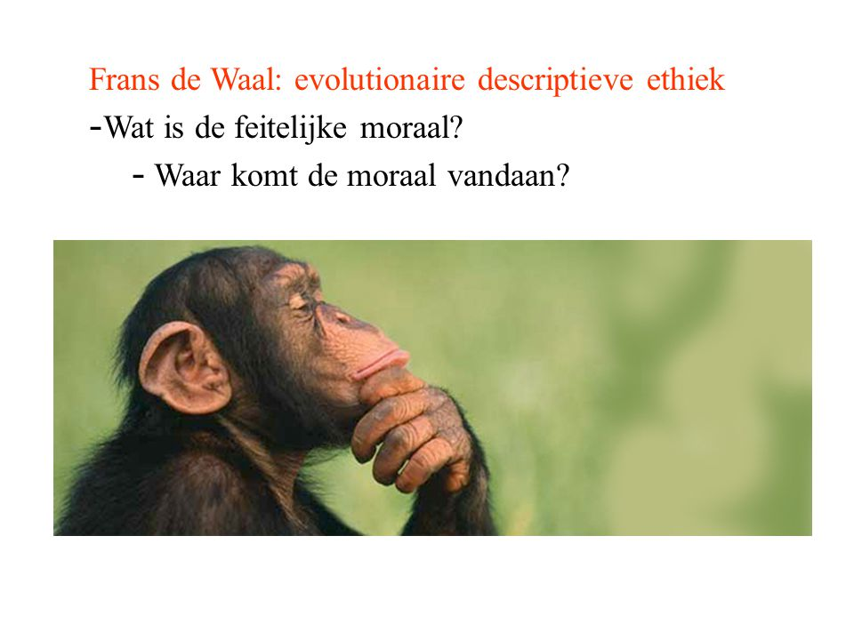 Frans de Waal: evolutionaire descriptieve ethiek