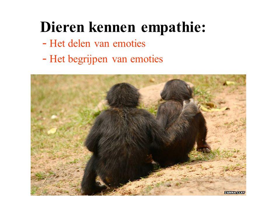 Dieren kennen empathie: