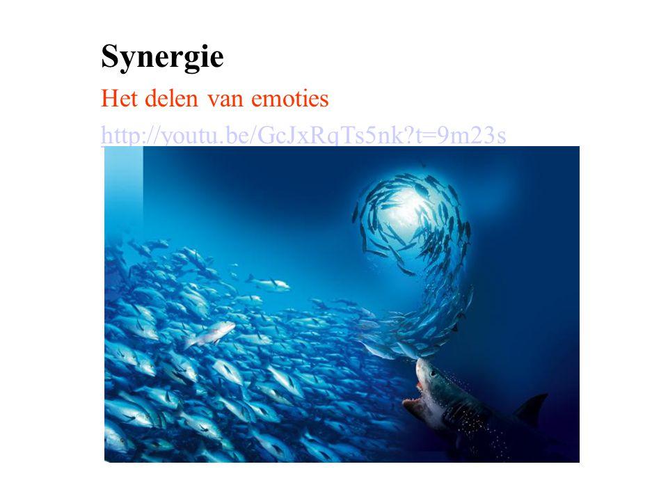 Synergie Het delen van emoties http://youtu.be/GcJxRqTs5nk t=9m23s