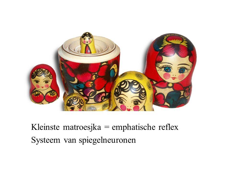 Kleinste matroesjka = emphatische reflex