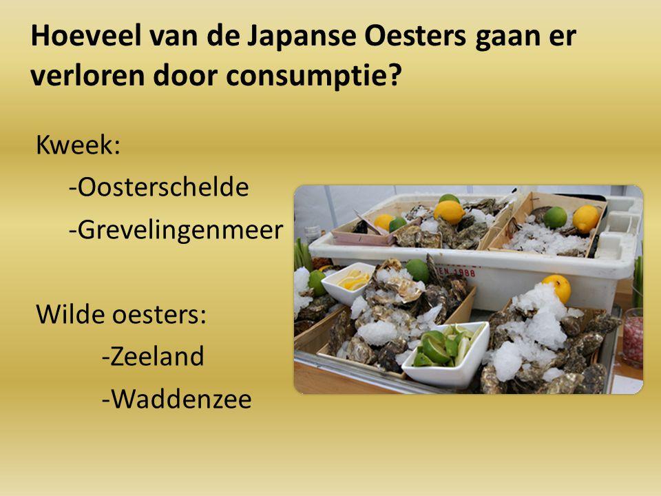 Hoeveel van de Japanse Oesters gaan er verloren door consumptie