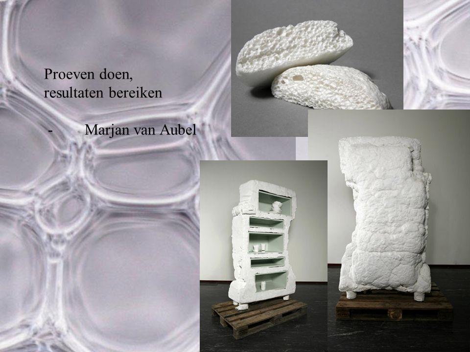 Proeven doen, resultaten bereiken Marjan van Aubel