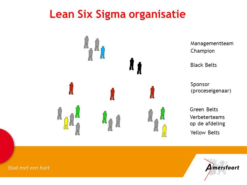 Lean Six Sigma organisatie