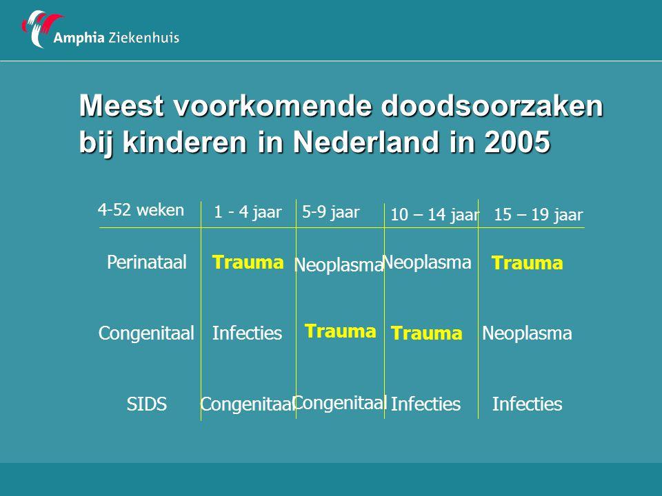 Meest voorkomende doodsoorzaken bij kinderen in Nederland in 2005