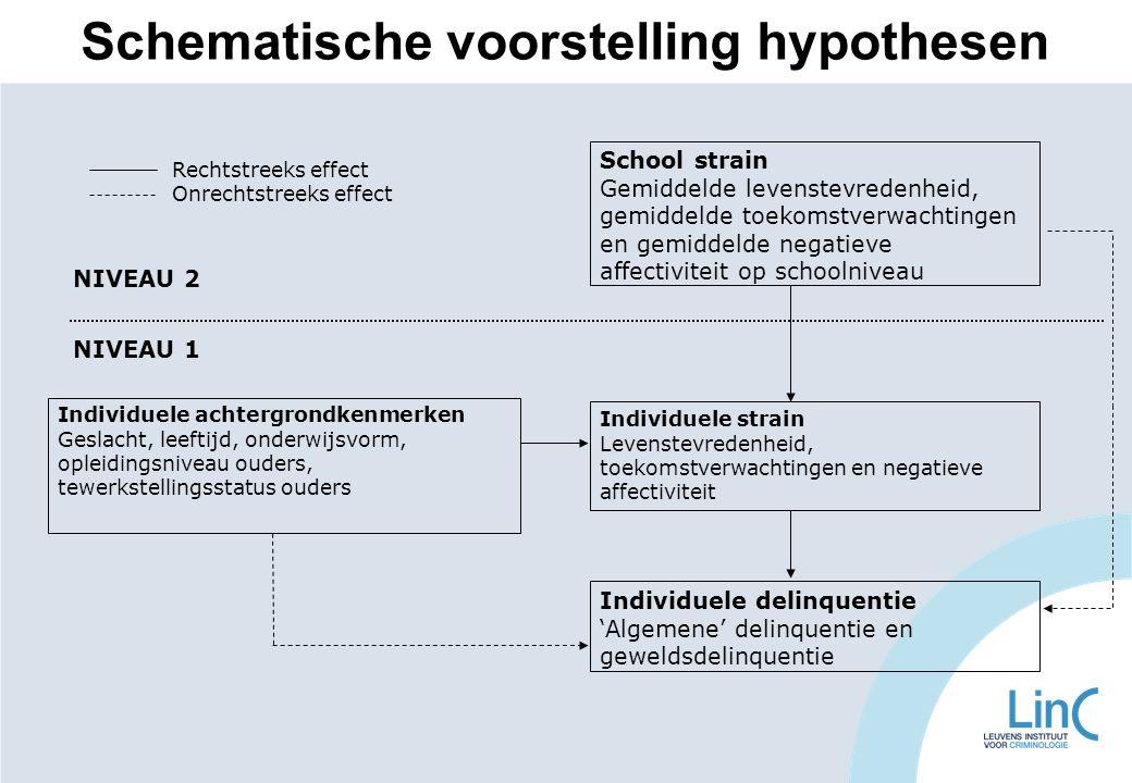 Schematische voorstelling hypothesen