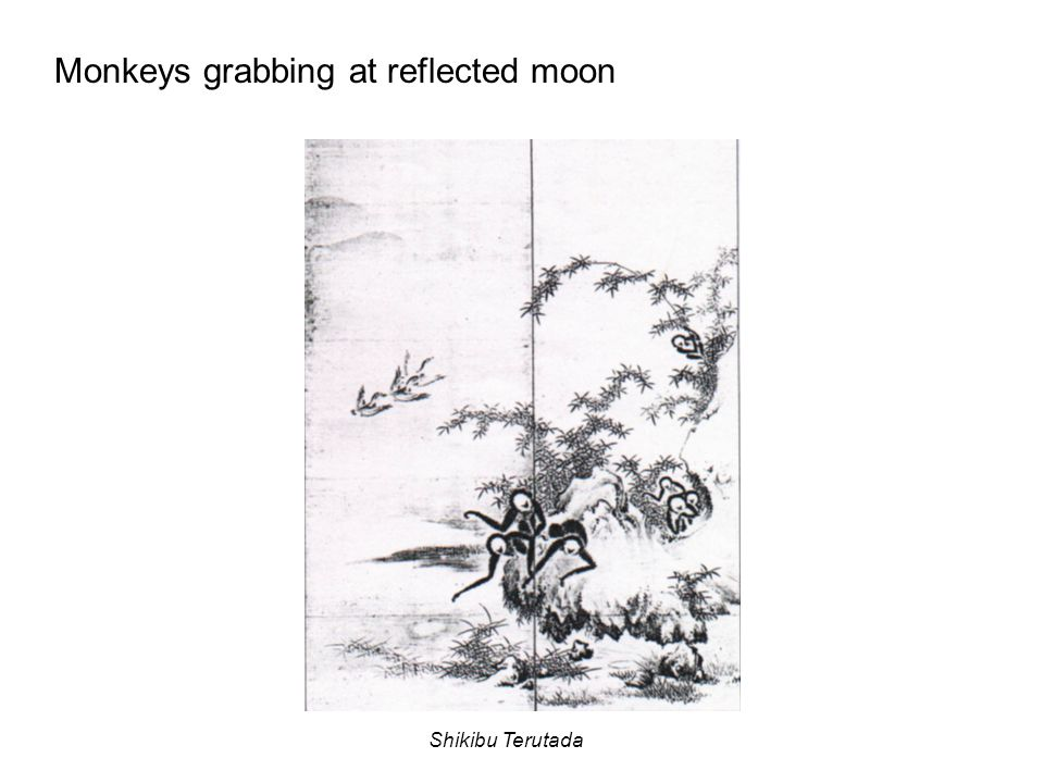 Monkeys grabbing at reflected moon