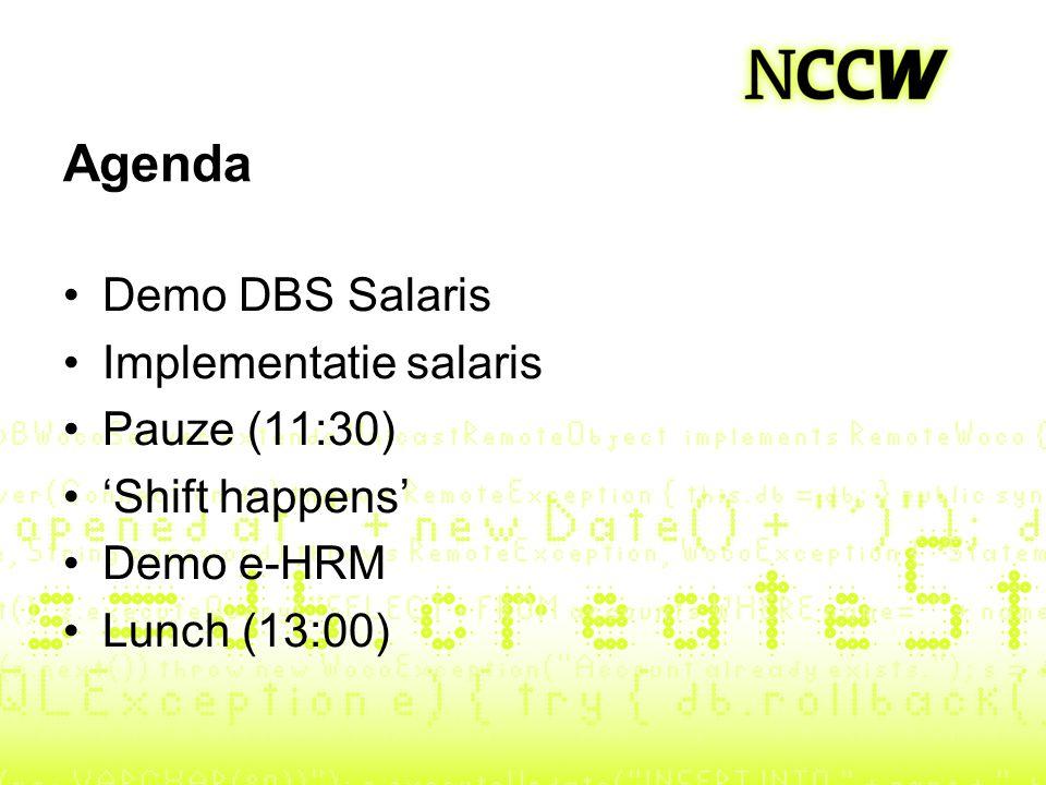 Agenda Demo DBS Salaris Implementatie salaris Pauze (11:30)