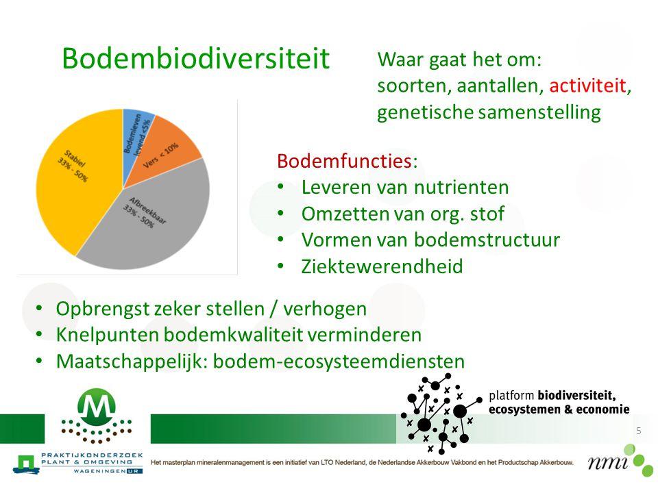 Bodembiodiversiteit Waar gaat het om: soorten, aantallen, activiteit,