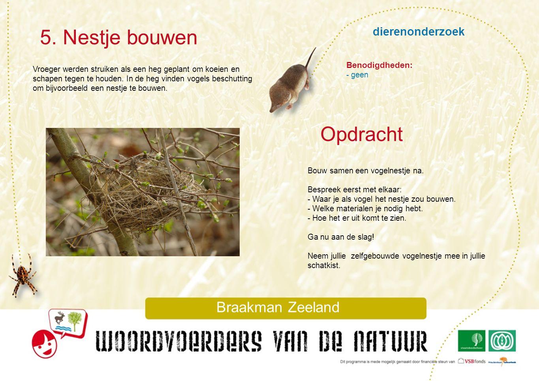 5. Nestje bouwen Opdracht dierenonderzoek Braakman Zeeland
