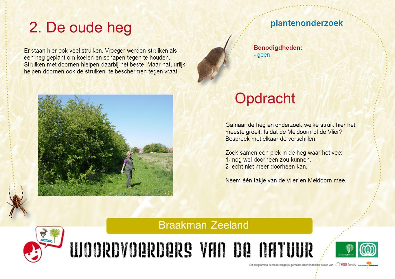 2. De oude heg Opdracht plantenonderzoek Braakman Zeeland