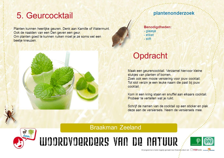 5. Geurcocktail Opdracht plantenonderzoek Braakman Zeeland