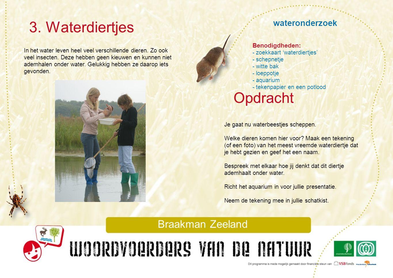 3. Waterdiertjes Opdracht wateronderzoek Braakman Zeeland