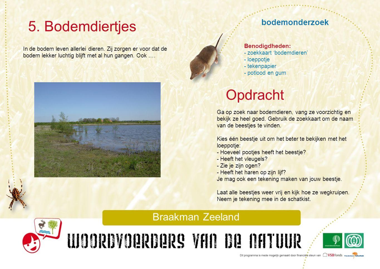5. Bodemdiertjes Opdracht bodemonderzoek Braakman Zeeland