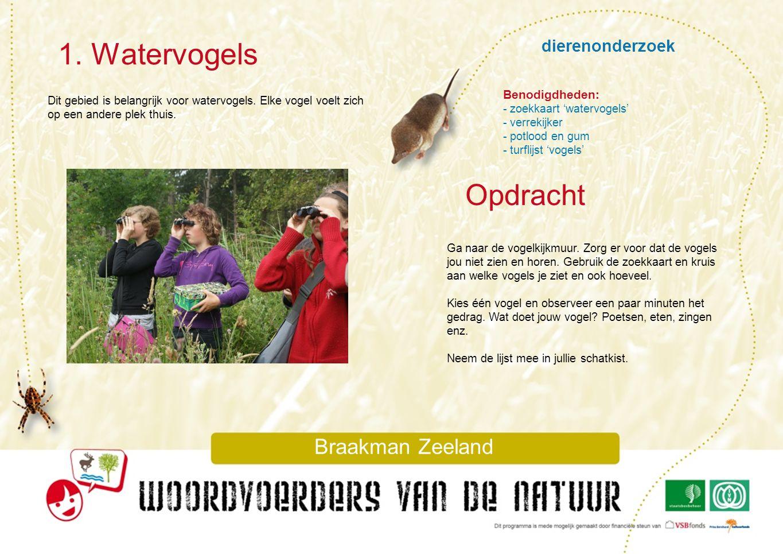 1. Watervogels Opdracht dierenonderzoek Braakman Zeeland
